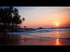 3 HOURS Relaxing Chill out Instrumental Shaxophone music Beautiful Long Playlist | Background music