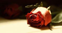 Canciones románticas de piano, música instrumental de amor.