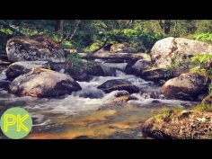 Música para relajarse y reducir la ansiedad con sonidos de la naturaleza