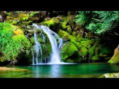 10 Horas de Música relajante y Sonidos de la Naturaleza