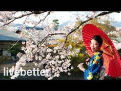 Música japonesa tradicional relajante instrumental alegre. Música folklorica de japón