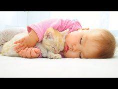Música clásica de Pachelbel para relajar y dormir a nuestros bebés.