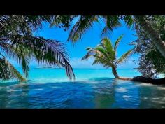 Música relajante con sonidos de agua para relajarse y dormir.
