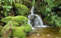 Música Zen para Meditar. Música Relajante para Meditación y Yoga.