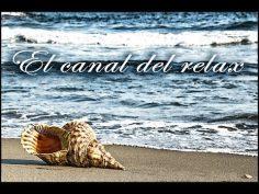 Sonido relajante del mar en calma para liberarnos de estrés.